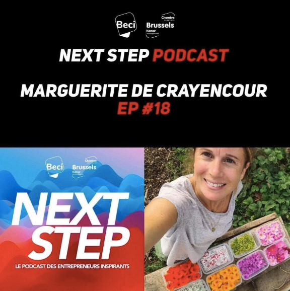 Next Step Podast - Novembre 2019