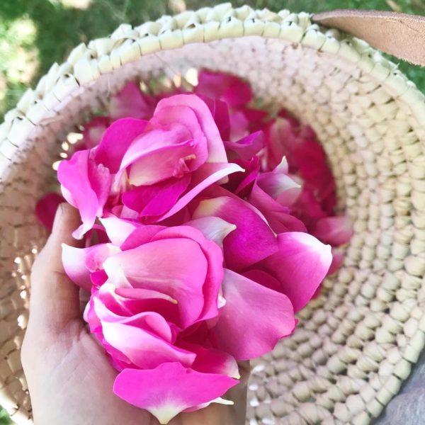 Pétales de roses de Damas